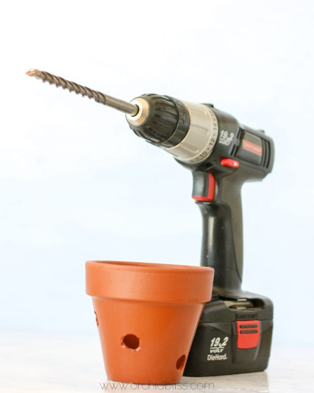 Drill holes with masonry bit for DIY orchid pot