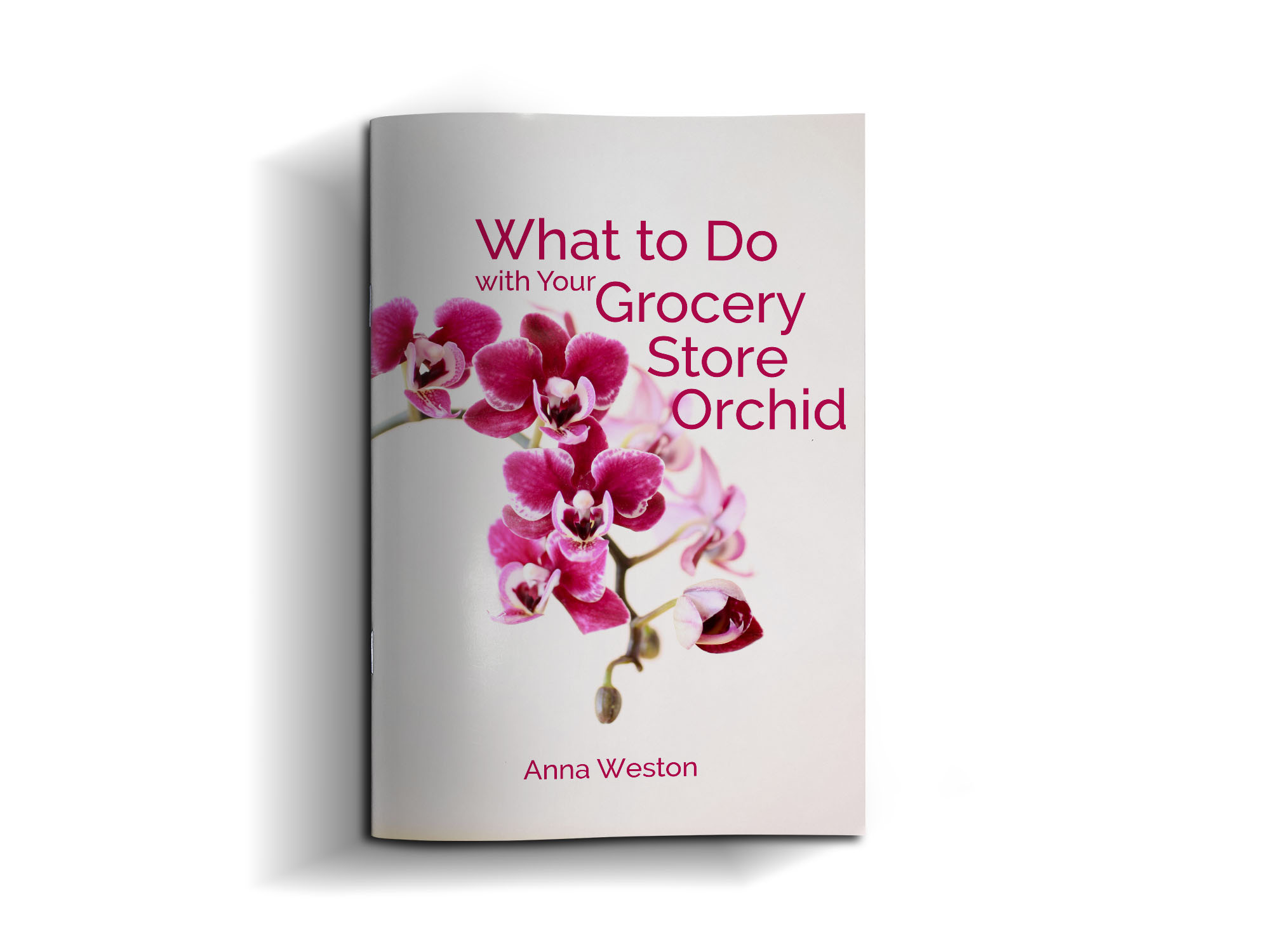 What to Do with Your Grocery Store Orchid
